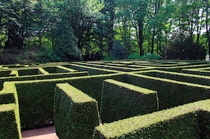 View of the William Meany Hedge Maze in Toronto Island, Ontario, Canada.